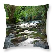 Lost River Throw Pillow