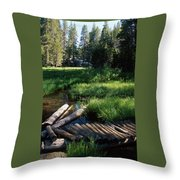 Lost Trout Creek Throw Pillow