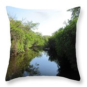 Lost Waterway Throw Pillow