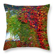 Lost Window Throw Pillow