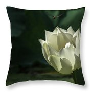 Lotos And Dragonfly Throw Pillow