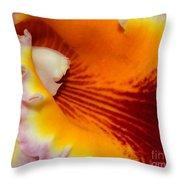 Lotsa Color Throw Pillow