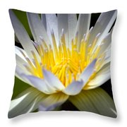 Lotus 10 Throw Pillow