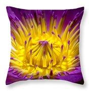 Lotus 12 Throw Pillow
