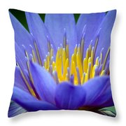 Lotus 6 Throw Pillow