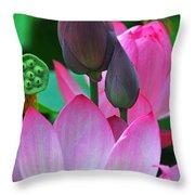 Lotus Blossoms  Throw Pillow