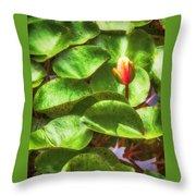 Lotus Bud Throw Pillow