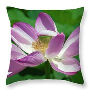 Lotus--center Of Being--protective Covering I Dl0087 Throw Pillow