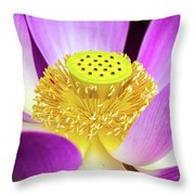 Lotus Central Detailed Throw Pillow
