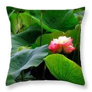 Lotus Forms Throw Pillow
