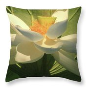 Lotus Light Throw Pillow