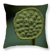 Lotus Pod Throw Pillow
