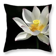 Lotus Reaching For The Sun Throw Pillow