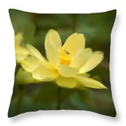 Lotus With Bee Throw Pillow