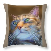 Louanne Throw Pillow