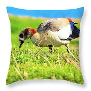 Loud Duck Colors Throw Pillow