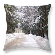 Louisen's Stowe 14 Throw Pillow