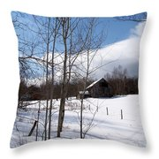 Louisen's Stowe 20 Throw Pillow
