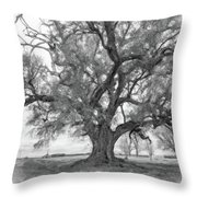 Louisiana Dreamin' Monochrome Throw Pillow