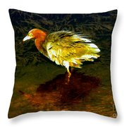 Louisiana Heron Throw Pillow