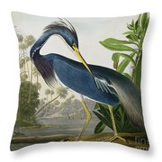 Louisiana Heron Throw Pillow