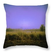Louisiana Pastoria Throw Pillow