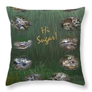 Louisiana Sugar Cane Poster 2008-2009 Throw Pillow