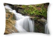 Louisville Brook - Bartlett New Hampshire Throw Pillow