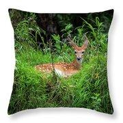 Lounging Fawn Throw Pillow