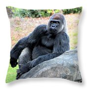 Lounging On This Rock Throw Pillow