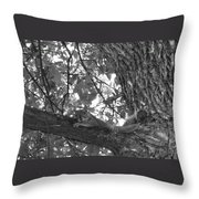 Lounging Squirrel Throw Pillow