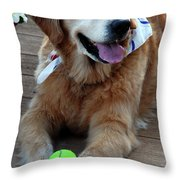 Love 15 Throw Pillow by Skip Willits