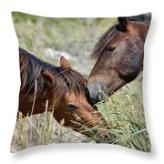 Love And Friendship Throw Pillow