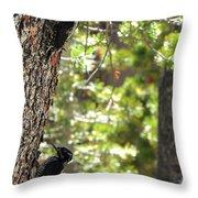 Love Birds 2 Throw Pillow