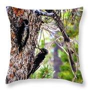 Love Birds Throw Pillow