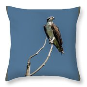 Love Call Throw Pillow