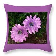 Love Daisies Throw Pillow