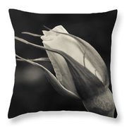 Love Has Gone Throw Pillow