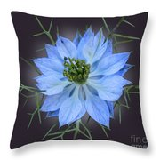 Love In A Mist Black With Light Throw Pillow