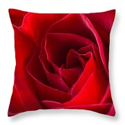 Love Is A Red Rose Throw Pillow