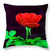 Love Is A Rose Throw Pillow