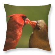 Love Is In The Air Cardinals Square Throw Pillow