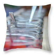 Love Is Sweet 3 Throw Pillow