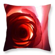 Love Me Tender As The Petals Of This Rose Throw Pillow