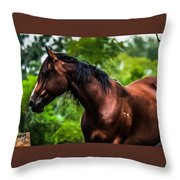 Love Of Horses Throw Pillow