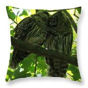 Love Owls Throw Pillow