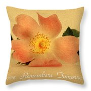Love Remembers Tomorrow Throw Pillow