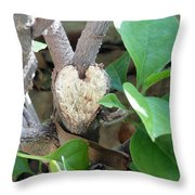 Love Revealed Throw Pillow