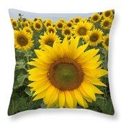 Love Sunflowers Throw Pillow
