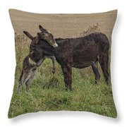 Love Ya' Momma Throw Pillow
